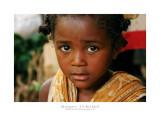 Madagascar - The Red Island 140