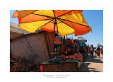 Madagascar - The Red Island 187