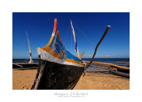 Madagascar - The Red Island 202