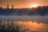Scugog River Sunrise 20080827