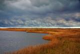 Storm Over Wetlands 33036