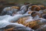 Guadalupe River Rapids 20090305