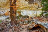 Canyon Wall Backdrop 44663
