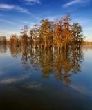 Lake Martin 45453-5