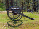 Confederate Cannon 46876
