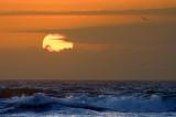 Gulf Sunrise 43297
