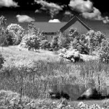 Barn & Pond 149346 (faux IR)