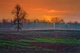 Rural Sunrise 20090509