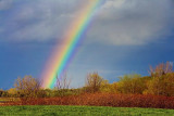 Partial Rainbow 48247