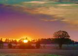 Fields At Sunrise 20090523