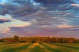 Sunrise Shadows 49628-9