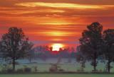 Sunrise Clouds 20090617