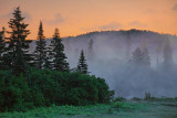 Dawn Fog 02155