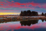 Red Sky Reflected 20091130