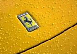 Wet Ferrari 20091205