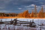Snowy Field 11575