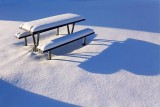 Snowy Picnic Table 11850