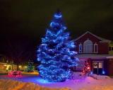 Christmas Lights 12107