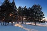 Snowscape 20100112