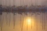 Foggy Harbor Sunrise Reflection 4703