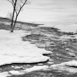 Mostly Frozen Mississippi 12764-5