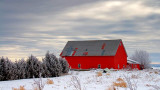 Red Barn In Winter 52596