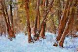 Sylvan Snowscape 14112 Art