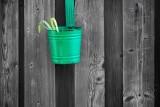 Flowerpot On A Fence 20100310