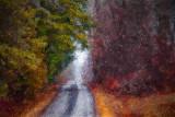 Long Farm Lane 15105 Art