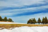 Lingering Snow 15139