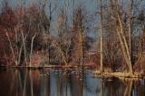 Jock River At Dawn 15516
