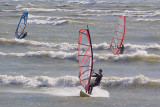 Three Windsurfers 69641