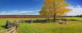 Woodyard Panorama 70174-6