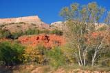 Palo Duro Canyon 20071102-70966