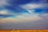 Texas High Plains 72204