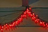 Chili Pepper Lights 20071114