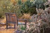 Cactus Garden Bench 72984