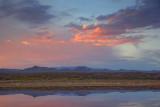 Bosque del Apache Sunset 73356