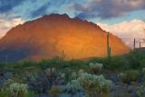 Mountain In Sunset Glow 75520