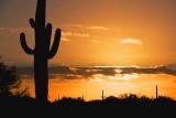 Desert Sunrise 20071202