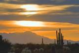 Desert Sunset 75994
