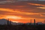 Desert Sunset 76029