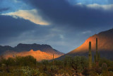 Desert Scene 76490