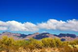 Lifted Desert Fog 76946