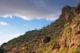 Desert Mountain 76224