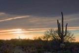 Desert Sunset 87012