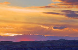 Bosque Sunset 73341