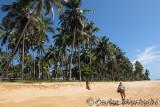 Sul da Bahia - 2010