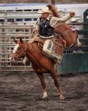 Saddle Bronc VI