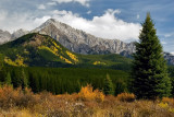 Autumn in Bow Valley